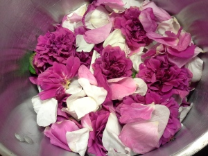 I was able to fill my pot nearly 3/4 full with rose petals.
